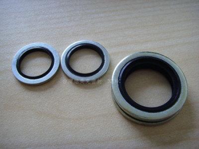 供应进口不锈钢组合垫圈